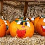 Pumpkin Day at The Garden Mill Saturday, October 14