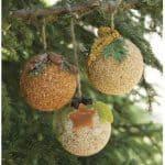 Bird Treat Ornaments