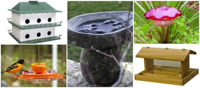 collage_bird-feed-house-birdbath